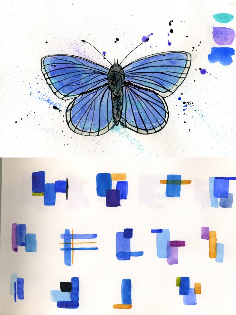 Ink drawing of butterfly colour samples